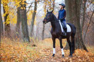 Equestrian Accident Claim